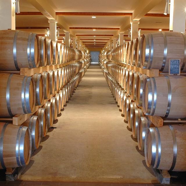 geapp software gestione cooperative vino olio ortofrutta