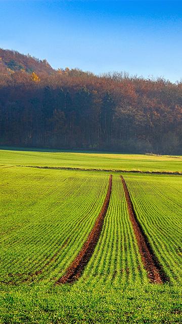 tracciamento attività con app per agricoltura di precisione